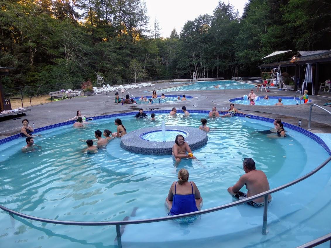 Forest & Beach Bathing: Olympic National Park | Holman Health